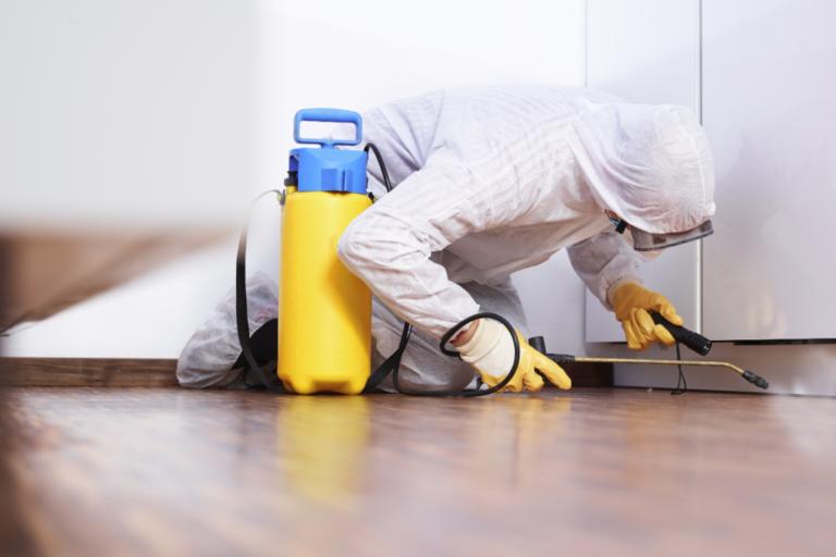 Post-pandemic-pest-management_pest-control_Feb_E-768x512